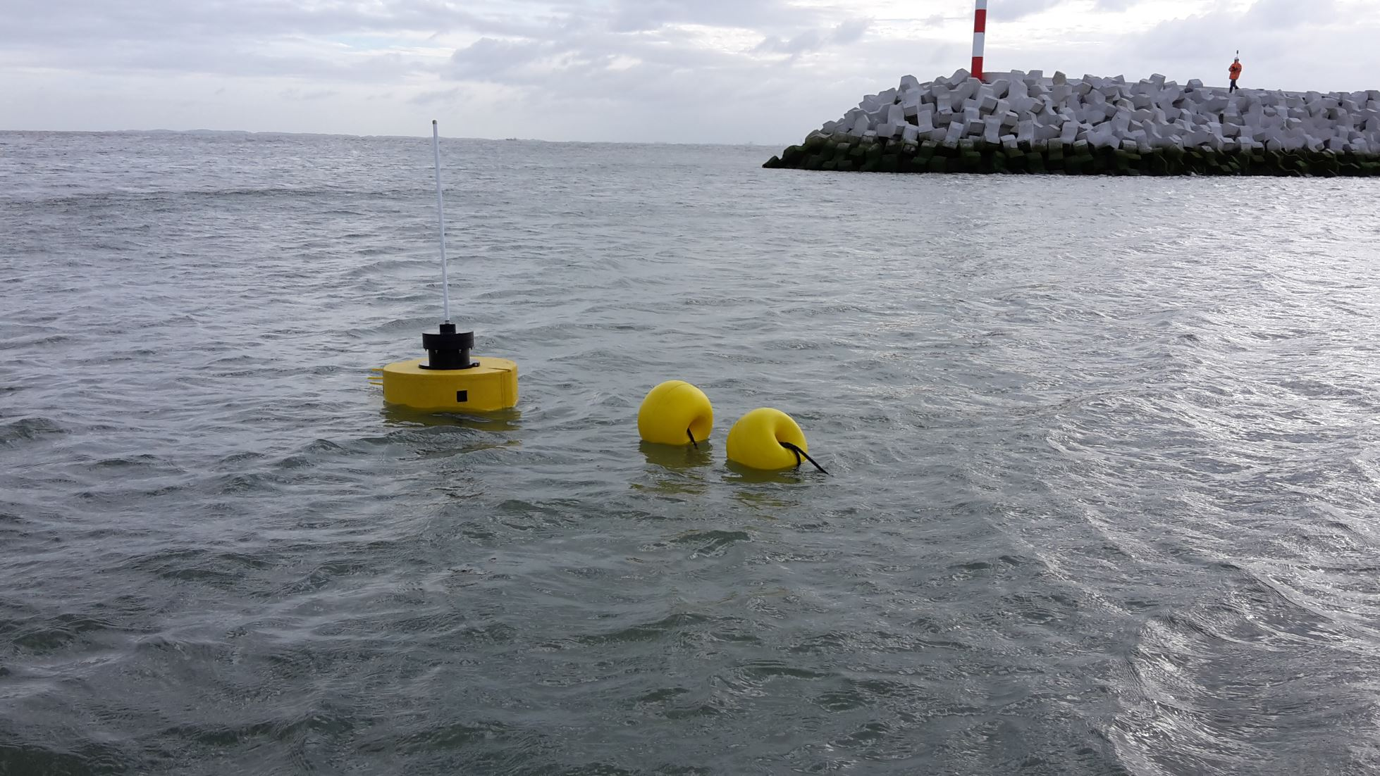 Determining wave penetration in a harbour